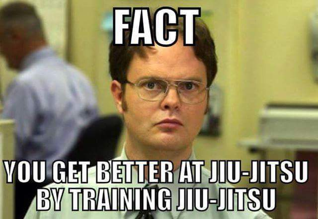 Fact You Get Better at Jiu Jitsu