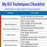 My BJJ Techniques Checklist [Fundamentals for White Belt to Blue Belt]