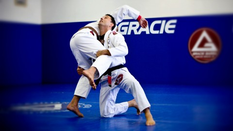 The Most Important Techniques of Brazilian Jiu Jitsu Udemy Course