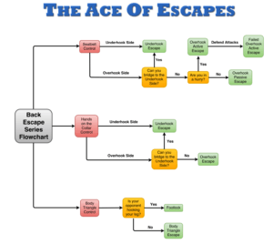 The Ace of Escapes Back Escape Series Flowchart