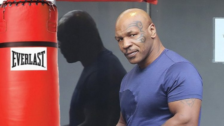 Mike Tyson Heavy Bag No Hit Back