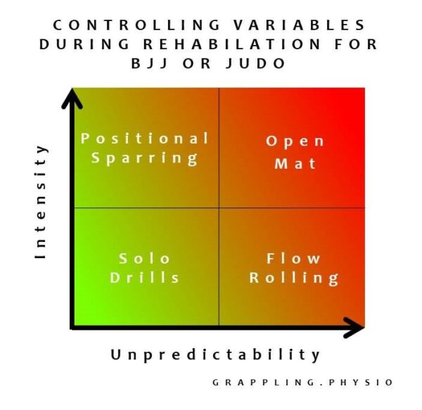 Controlling Variables During Rehabilation for BJJ or Judo